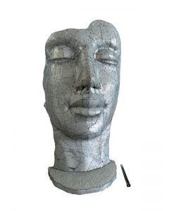Gesicht Metall, silber